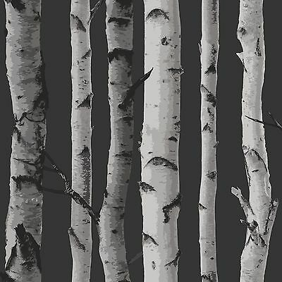 FINE DECOR BIRCH TREES WALLPAPER 10m - BLACK & SILVER NEW SEALED ROOM DECOR