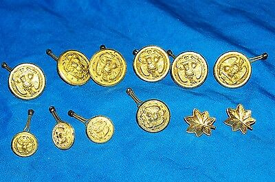 US Army Major's Pins Button Oak Leaf Leafs USGI Major Officers Buttons Military