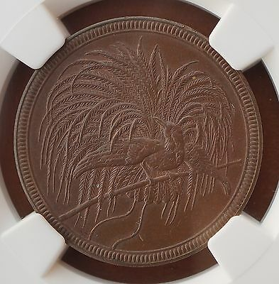 1894 A German New Guinea  10 Pfennig  KM# 3 NGC MS63BN  Low Mintage 24000