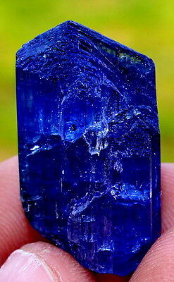 WOW 60.0 ct Terminated Cornflower Blue Gemmy TANZANITE Crystal Tanzania for sale