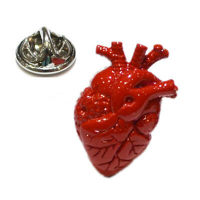 Red Anatomical Heart Design Lapel Pin Badge Biology Surgeon Doctor Body Gift New