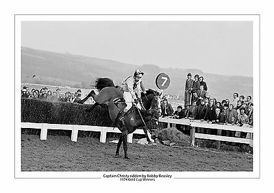 Captain Christy Horse Racing A4 Photo  Bobby Beasley Cheltenham Gold Cup 1974