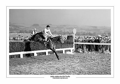 Arkle Horse Racing A4 Photo Print Pat Taaffe Cheltenham Gold Cup 1964