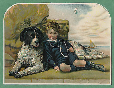 Newfoundland And Small Boy Lovely Dog Greetings Note Card