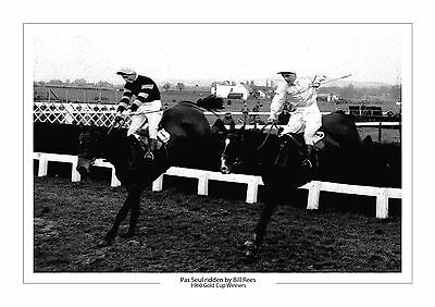 Pas Seul Horse Racing A4 Photo Print Bill Rees Cheltenham Gold Cup 1960