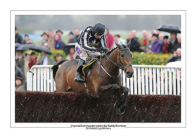 Imperial Commander Horse Racing A4 Photo Paddy Brennan Cheltenham Gold Cup 2010