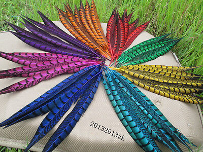 Wholesale HIgh Quality 10 / 50 pcs natural Lady Amherst Pheasant Tail feathers