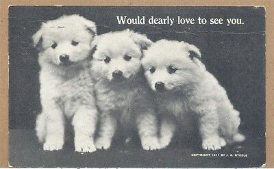 1911 3 Alaskan Malamute Puppies Would Dearly Love to See You PC Steele