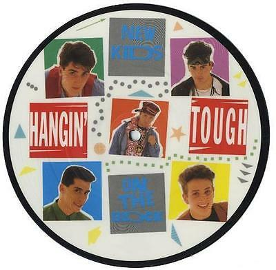 New Kids on the Block # 13 - 8 x 10 Tee Shirt Iron On Transfer picture disc