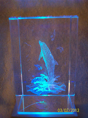 Dolphin Laser Etched Glass Cube Paperweight/Read Description Closely