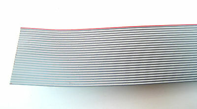25 Conductor Gray Ribbon Cable: 5 Foot Piece