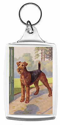 Airedale Terrier Lovely Dog Print Image Key Ring Fob Nice Gift