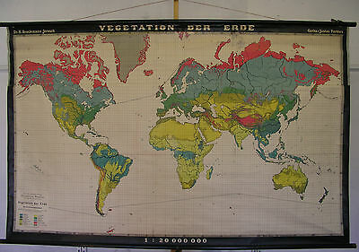 Schulwandkarte map Welt World Erde Vegetation 20Mio 40-50er Wandkarte 212x133