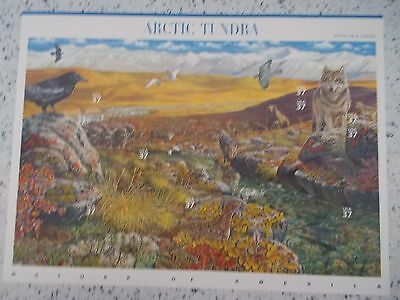 #3802 2003 ARTIC TUNDRA 5th Series Mint MHN PANE 10 37 Cent US Postage Stamps