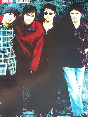 The Bluetones - Magazine Cutting (Full Page Photo) (Ref H7)