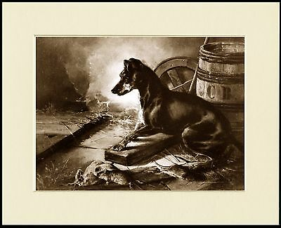 Manchester Terrier Lovely Sepia Dog Print Mounted Ready To Frame
