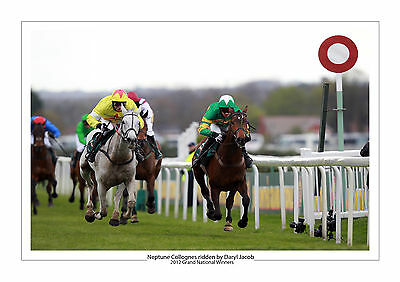Neptune Collonges Horse Racing A4 Photo Daryl Jacob Grand National 2012   2