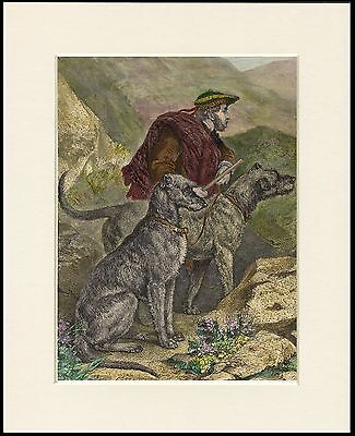 Scottish Deerhound Two Dogs And Gamekeeper Dog Print Mounted Ready To Frame