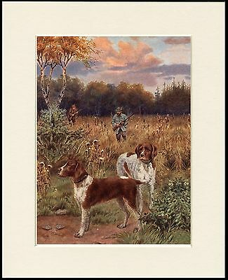 German Shorthaired Pointer Shooting Scene Dog Print Mounted Ready To Frame #3