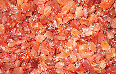 Gemstones Polished Chips Gem tree Craft Carnelian 180 stones approx.