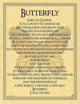 BUTTERFLY Parchment Page for Book of Shadows!