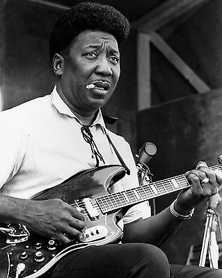 Muddy Waters Blues Concert Music 8X10 Glossy Photo Picture Photograph