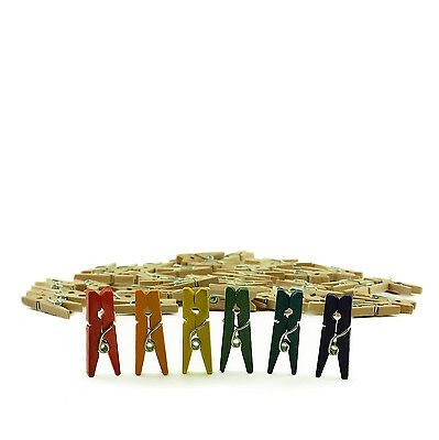 """Mini Multi Color Natural Wood 1"""" Inch  Wooden Photo Paper Clothespin Clothes Pin"""