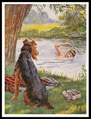 Airedale Terrier Guards Boy While Swimming Great Vintage Style Dog Print Poster