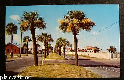 1950 S Postcard Waterfronty Avenue Savannah Beach Georgia Mint