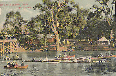 Postcard Goulburn River Shepparton Victoria 1906 showing rowing competition