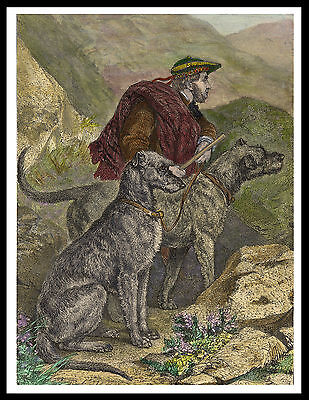 Scottish Deerhound Man And Dogs Lovely Vintage Style Dog Print Poster