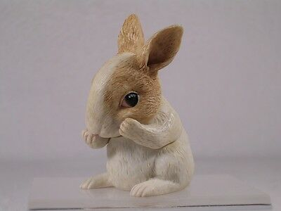 Harmony Kingdom Ball Pot Bellys / Belly 'Potter' Baby Rabbit #PBBRA2  New In Box
