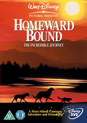 Homeward Bound DVD (2001) Robert Hays, Dunham (DIR) cert U Fast and FREE P & P