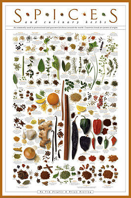 Spices and Culinary Herbs Ziegler & Keating Gourmet Kitchen Cooking Print Poster