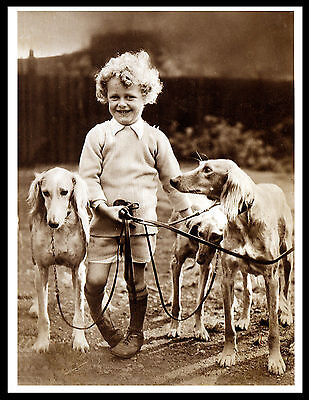 Saluki Small Boy And Dogs Lovely Image Vintage Style Dog Print Poster