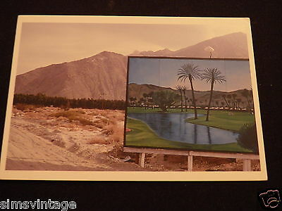 Unusual Weird Postcard Desert Oasis 1985 by Robert Landau