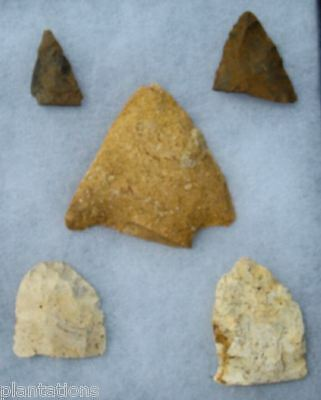 Group Of 5 High Grade Georgia Arrowheads/points-Ex Carter-Surface Finds