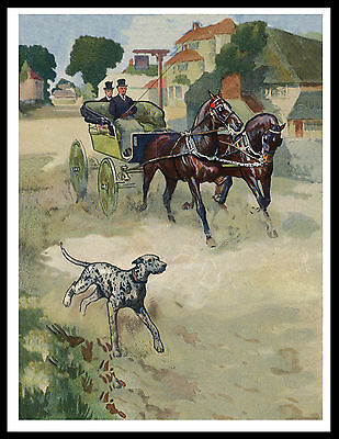 Dalmatian And Carriage Lovely Vintage Style Dog Print Poster