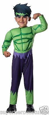 The Avengers Incredible Hulk Toddler Costume 2T - 4T Brand New 620016 Rubies