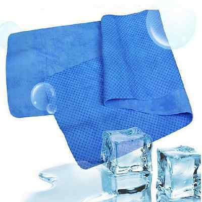 New Outdoor Sports Exercise Sweat Summer Ice Cold Cooling Towel Chilly Pad