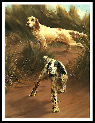 English Setter Two Dogs Lovely Vintage Style Dog Print Poster