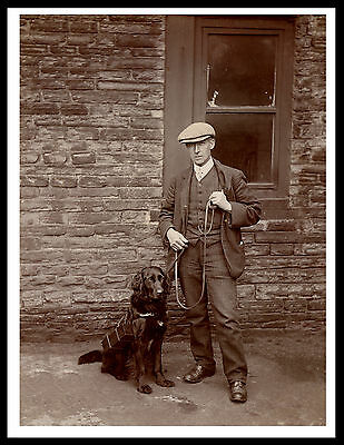 Flat Coated Retriever Man And Collecting Dog Great Vintage Style Print Poster