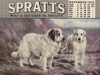 Pyrenean Mountain Dog Old Spratts Calendar Advert Image On Greetings Note Card