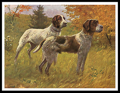 German Wirehaired Pointer Two Dogs Great Vintage Style Dog Print Poster