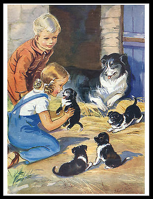 Border Collie Children Mother And Pups Charming Vintage Style Dog Print Poster