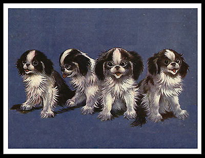 Japanese Chin Group Of Dogs Lovely Vintage Style Dog Print Poster