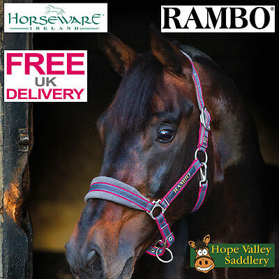 Rambo Padded Headcollar (DHAG40) **FREE UK SHIPPING**