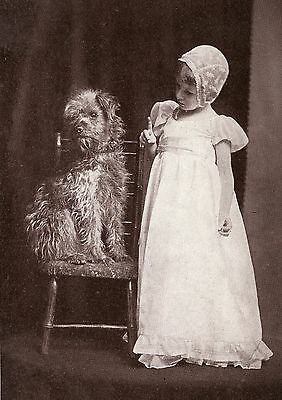 Soft Coated Wheaten Terrier Little Girl Charming Dog Photo Greetings Note Card