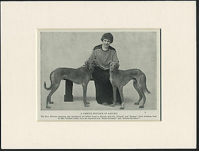 SALUKI NAMED DOGS AND LADY OWNER OLD 1930's DOG PRINT MOUNTED READY TO FRAME