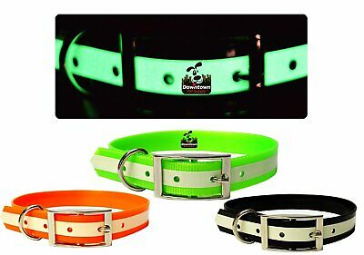 Glow In the Dark TPU Pet Safety Leash for Small Medium and Large Cats and Dogs